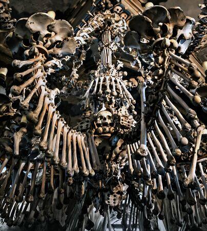 Human Skeleton bones and skulls background. Abstract concept Skeleton grave. Soft focus Stock Photo - 133159752
