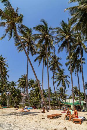 PHAN THIET, VIETNAM - Feb 16, 2015: Girl pretty, People tropical beach with coconut palm trees, Phan Thiet. Sunbed woman tanned body bikini sunbathing on deck chair, relaxing on beach chair. Standard-Bild - 134696949