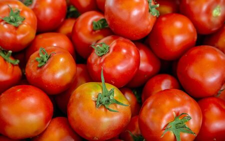 Beautiful ripe red tomatoes closeup vegetable background Top view blur textures soft focus. Stock Photo