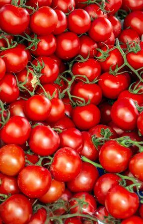 tomates rouges mûres gros plan légumes arrière-plan Vue de dessus flou textures flou artistique. Banque d'images