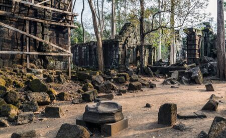 Angkor Wat, Cambodia.  Archaeological Landscape of Koh Ker Moss on the stone brick sandstone laterite blocks at the Angkor Wat site in Northwest Cambodia