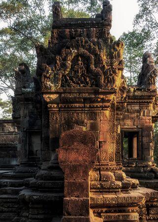 Ruins of ancient banyan tree temple complex Angkor Wat Siem Reap, Cambodia