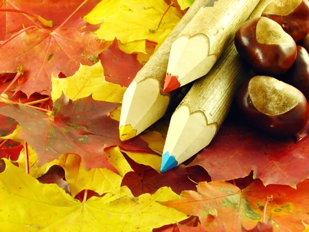 autumn composition: chestnuts and color pencils on leaves photo