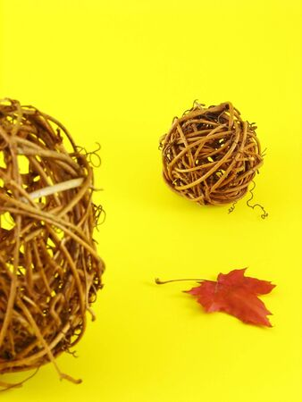 implicated: autumn composition: dry leaf and balls from branches on yellow background Stock Photo