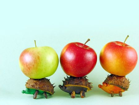 autumn composition from creative series: chestnuts hedgehogs