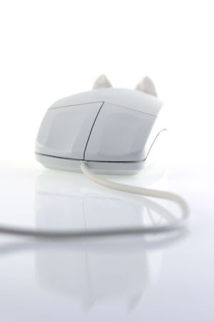 image from object series: mouse photo