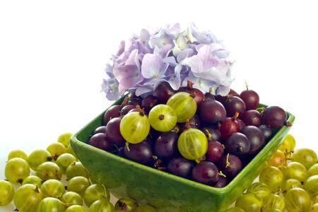 adn: serie de frutas: el rojo y el verde gooseberry