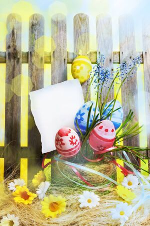 Art easter background with fence, eggs, spring flowers, blank card for design or greating card photo