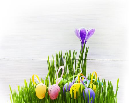 Art easter card with eggs, grass and spring flowers on wooden background for design or greating card photo