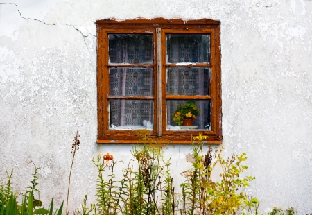 View of the old small window in garden photo