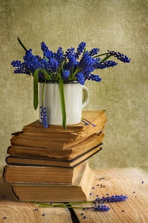 Still life with hyacinth bouquet on books photo
