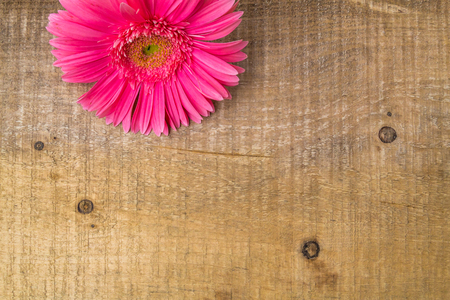 Composition with flower on a wooden table to the project Stock Photo - 22755826