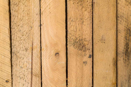 Natural wood as a table to the project Stock Photo - 22755818