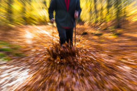 Legs of man cultivating autumn in the forest Nordic walking photo