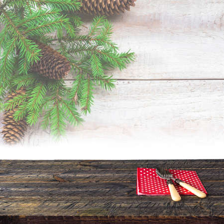 janu: Wooden table with festive tableware. Twigs in the background
