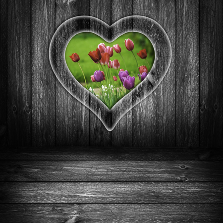 The window in the shape of a heart on a wooden wall with a view of the tulips photo