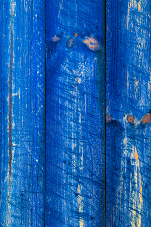 softwood: The wall of wooden planks painted in blue
