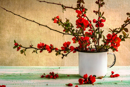 colorful still life: Still life with a bouquet of barberry Stock Photo