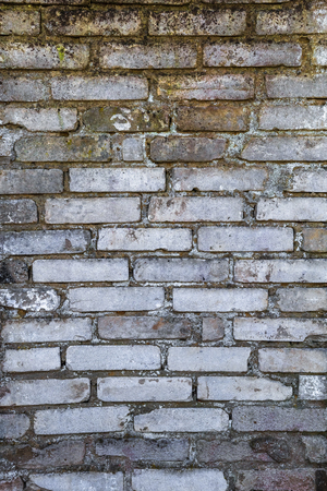 chapped: Old farm building wall of white brick