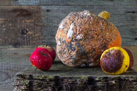 mycelium: Old and rotten fruit on wooden board Stock Photo
