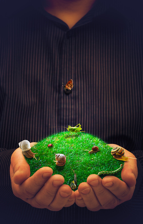 The spring conceptual artwork - animals in the meadow in male hands photo