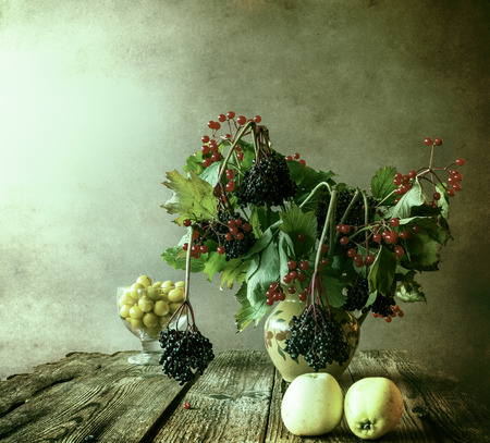 Autumn bouquet: Still Life with sprigs of elderberry photo