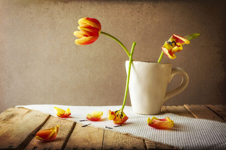 Transience: Still life with tulips in a cup photo