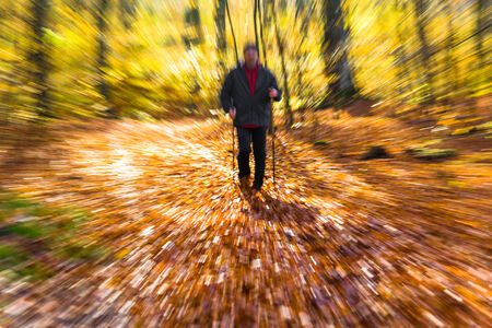 hardening: Cultivating the figure of a man in the autumn in the forest Nordic walking Stock Photo