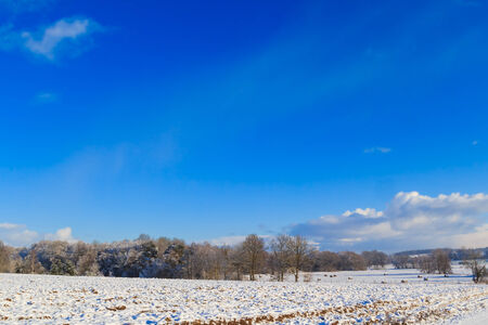 winterly: Winter landscape: a view of the fields and forests covered with snow