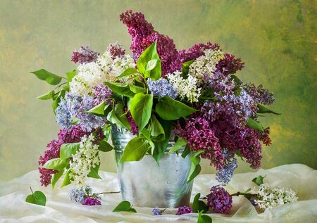 lilacs: Still Life with a bouquet of lilacs