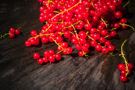 red currant: Red currant fruit scattered on a wooden bench