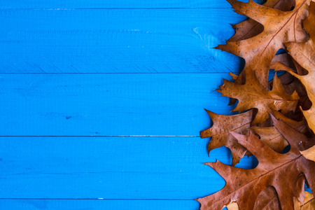 Fall background with leaves on blue boards