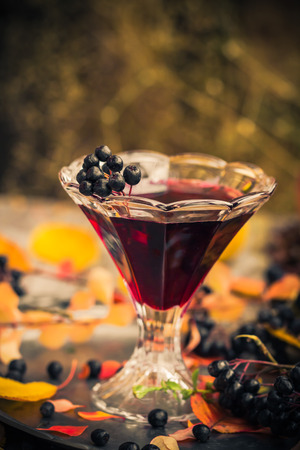 tincture: Gifts of autumn in the kitchen: sweet aromatic drink tincture of chokeberry