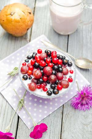breakfast garden: Breakfast in the garden: fruits currants and gooseberries with buttermilk