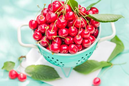 pickling: Fresh red cherry fruit in green colander
