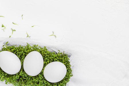 White Easter background with eggs green cress