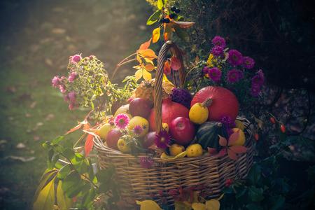 A basket full of fruit in an autumn garden in a mystical light