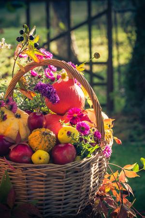 Fruit in a basket. Autumn in the garden