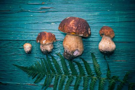 Autumn composition: boletus on a wooden table