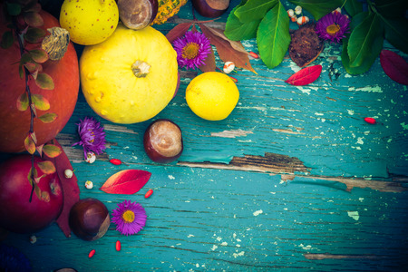 Autumnal  with fruits and seasonal crops Standard-Bild