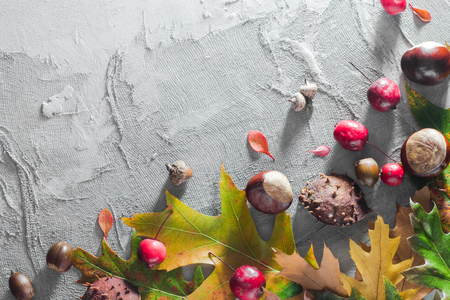 Autumnal  with chestnuts, acorns and leaves