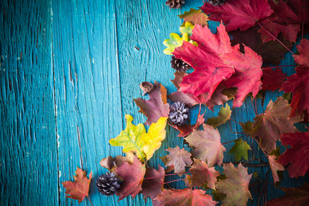 Autumn  with gifts of nature on wood