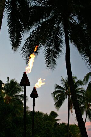 torches: A couple of hawaiian torches during sunset Stock Photo