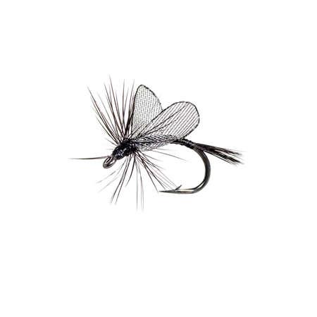 Fly fishing lure isolated on white background photo