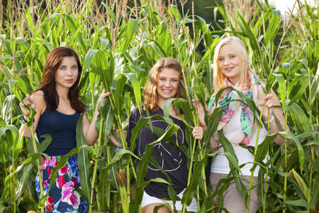 three happy and smiling teenage girls in a corn field photo