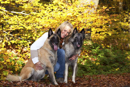 A portrait of a smiling blond woman with her two belgian shepherds photographed in an autumnal forrest photo