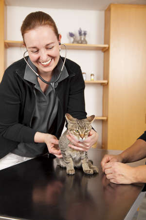 A domestic cat being examined by a smiling veterinarian photo