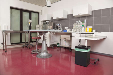medical practice: An operating room at a veterinarian practice