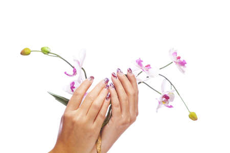 A beauty concept - hands with acrylic fingernails holding flowers, shot on white studio background