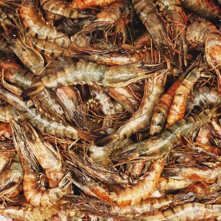 Close Up of raw shrimps